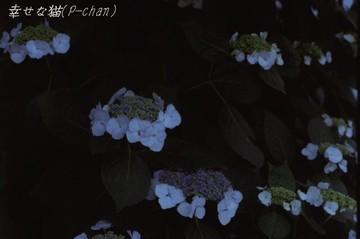 1647_0026ftb