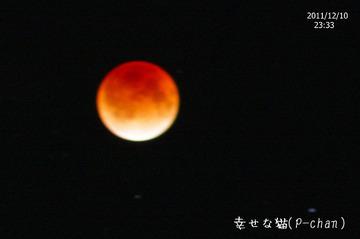 Wr20111210_kissf_038