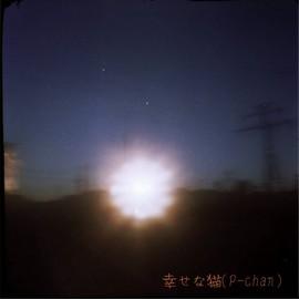 SN014-0025-tig